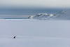 sleeping place with view (Markus Trienke) Tags: greenland eastgreenland winter cold ice snow dog sogs mountain sea coast seaice view landscape frozen canon eos mkiv 5d kulusuk pirhuk travel adventure expedition dogsledding mushing