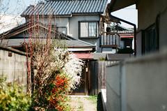 Entrance (yasu19_67) Tags: minoltaα7 jupiter985mmf2 jupiter film filmism filmphotography analog atmosphere photooftheday shadow fujifilm 業務用100 osaka japan