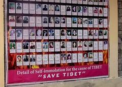 NEPAL, In Pokhara, Erinnerungstafel von Tibetern , die sich auf Grund der politischen Lage in Tibet selbst umgebracht haben, 16114/8399 (roba66) Tags: reisen travel explore voyages roba66 visit urlaub nepal asien asia südasien pokhara tibeter flüchtlinge gedenktafel selbstmord selfimmolation
