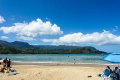 Kaui 063 DSC03434 (cpburt) Tags: hanalei kauai hanaleipier surfboard longboard beach surfing hawaii