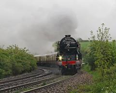 Rain, rain, rain... (Treflyn) Tags: a1 pacific 60163 tornado crofton london victoria bristol belmond british pullman wet tow path usual location rain