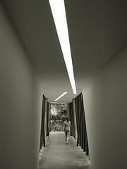 Felix Nussbaum Haus (I) [EXPLORE 2017-05-10] (pix-4-2-day) Tags: architecture architektur daniellibeskind daniel libeskind felixnussbaumhaus nussbaum museum osnabrück erweiterungsbau monochrome monochrom schwarzweis blackandwhite black white pix42day