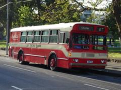 Dee Decker Tours 1296AC Melbourne (Guy Arab UF) Tags: dee decker tours 1296ac 1982 man sl200 ansair mk1 party bus victoria parade melbourne australia