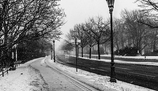 Snow day in Berlin
