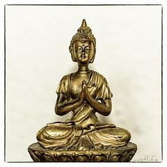 Buddah (mistlife) Tags: buddah