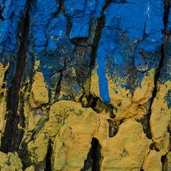 outdoor complementary contrast (ewaldmario) Tags: baum baumrinde blau falkenstein gelb weinviertel tree blue macromondays wood inthewood nikon ewaldmario complementary contrast macro bark cortecca albero arbro trailmarker markierung contrassegno abstract texture
