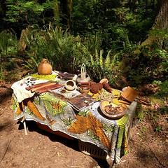 #wildernesssurvival #primitiveskills #survivalskills #display #DIY #weaving #basketry #knives #arrowhead #gourd #wool #butternut (#juglanscinerea) #homeschool #meetup #hawthornfarm #butterfly #tablecloth #leather #journel #squirrel (Heath & the B.L.T. boys) Tags: instagram farm permaculture butterfly tablecloth squirrel gourd tools knife diy nuts forest fern basket leather weaving
