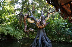 """Walt Disney World: Python on the Jungle Cruise • <a style=""""font-size:0.8em;"""" href=""""http://www.flickr.com/photos/28558260@N04/34750291685/"""" target=""""_blank"""">View on Flickr</a>"""