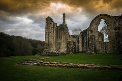 Finchale Abbey (Michael_Barnes) Tags: abbey ruins landscape green grass garden grassy sky stone finchale northeast nature outdoors trees tree rocks woods old colours clouds moody dark arch brick
