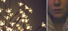 114 (amyjutras) Tags: self selfportrait diptych 365 lights bulbs lightbulbs cherryblossoms blossoms mood aesthetic lowlight
