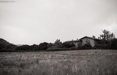 In the Wood (Simone Perico) Tags: bergamo casa italia lombardia mattoni natura villadadda bw black white bianco nero bosco campo cascina farmhouse farm fujifilm xt1 18135