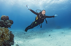1204 24a (KnyazevDA) Tags: disabled diver disability diving owd underwater undersea padi redsea buddy handicapped paraplegia paraplegic