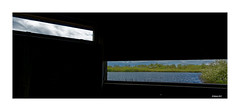 UNBEOBACHTET BEOBACHTEN (Babaou) Tags: niederlande nederland nationaalpark degrootepeel dxo 1022mm ospeldijk