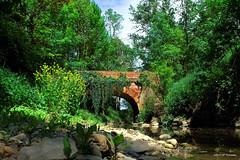 Pont Saint-Jean (jpto_55) Tags: pont pontsaintjean aussonelle hautegaronne france rivière xe1 fuji fujifilm fujixf1855mmf284r ngc flickrunitedaward