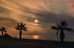 Amanece, que no es poco.... (Jotha Garcia) Tags: amanecer sunrise morgendämmerung aube sol soleil sun sonne contraluz backlighting hintergrundbeleuchtung rétroéclairage clouds nubes nuages wolken mar sea meer mer playa beach plage strand oropesa comunidadvalenciana españa spain palmeras palmen palmiers palms nikkor180550mmf3556 nikond3200 jothagacia verano été summer sommer agua water wasser réflexionsoleil sonnereflexion sunreflection reflejodesol july julio juli juillet 2016