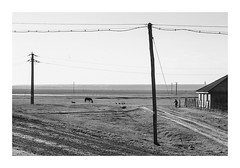 Countryside stories #3 (Florin Aioanei) Tags: countryside blackandwhite horse people shapes romania florin aioanei