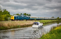 55009 Alycidon ~ 6th May 2017 (deltic17) Tags: 55 55009 d9009 9009 alycidon deltic napier dps delticpreservationsociety deltics diesel heritage heritagediesel charter special executive br britishrail loco locomotive locohauled countryside lincolnshire canon5dmk3 canon 1z11 ecml train grey sky uk ukrail transport photography lincoln class68 drs directrailservices bluegrey mk2d coach mk2 cargod willington tour pathfinder