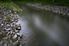 IMG_2409 (DB - Fotografie) Tags: water darkness wasser green nature woods thinking backtonature photography fotografie thinkoutloud