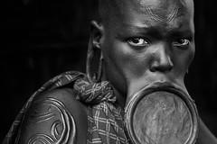 Ragazza Surma (daniele romagnoli - Tanks for 18 million views) Tags: suri surma ethiopia etiopia äthiopien ethiopie etiyopya etiopien αιθιοπία أثيوبيا エチオピア 에티오피아 इथिय ोपिया эфиопия אתיופיה أفريقيا 比亚 etiopija africa afrique アフリカ 非洲 африка αφρική afrika 아프리카 etnia etnico ethnique этниче 種族 民族性 ethnicity tribu tribes tribo tribale tribal tribe племя 部族 omo afrikan africani romagnolidaniele omoriver omovalley valledellomo 埃塞俄比亚 etnias nikon d610 portrait ritratto decorazioni artistico pigmento artistic tradizione ethnie ethnic cultura bodypainting ethnology етиопија monocromo biancoenero labiale bw blackandwhite bestportraitsaoi