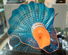 Maya Blue Persian (2014) for $8,100 at the Visitor Center Shop, Dale Chihuly Exhibit at the New York Botanical Garden (jag9889) Tags: 2017 20170511 allamericacity art artwork artist blownglass botanicalgarden bronx bronxpark chihuly chihulynybg2017 dalechihuly exhibition garden gift glass indoor installation kunst landmark landscape ny nybg nyc nationalhistoriclandmark newyork newyorkbotanicalgarden newyorkcity plants sculptor sculpture shop skulptur thebronx usa unitedstates unitedstatesofamerica visitorcenter jag9889