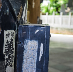 Japan Narita Temple E