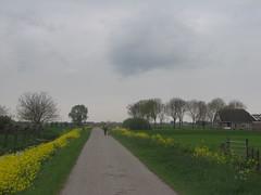 IMG_8404 (kassandrus) Tags: hiking wandelen netherlands nederland struinenenvorsen oude hollandse waterlinie