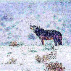 34305568266_fff4866a27.jpg (amwtony) Tags: 33955690480710520eb86jpg nature outdoors animals snow 34339492675d699308cc8jpg 34181696462c3b3f537c2jpg 33498476034f4cc55598cjpg 33956448090f1a4981217jpg 3395665715099a0408a6djpg 33499101954ce468bfd99jpg 34299832136d9df9f5253jpg 34299961506f6de99fc88jpg 34340934485c6d75ca6bdjpg 34341109165eab98672e2jpg 335311433339eb9907edcjpg 33500107954778c679bbfjpg 34300647796c05a5c9d56jpg 343417908555a064de8e7jpg 3418405226251407d1897jpg 3421158812163fb8b5ce1jpg 33500985594d2c19c6da4jpg 34211925081c6941288a3jpg 34301837676180628ff9bjpg 343021391063dde865ac0jpg 34343354085010104192djpg 34212841701dce07b1eeajpg 33533172213f3fde662b7jpg 34213177791eccb7ee80ajpg 335334619137eab21f63ajpg 3396041732031240a94f1jpg 3418628095243120a592ejpg 33533957233bffe338d4djpg 3350318573430b747ab2djpg 3353429962399e72b731ajpg 3396127235023478db018jpg 3430439770695ddbfa6dajpg 34187314412bb06b46582jpg 3421489433130b460d5ccjpg 3434580692592d0511edbjpg 34187755292cf546a40b6jpg 3430526873606033a716djpg 3350461390489b56fc7cfjpg
