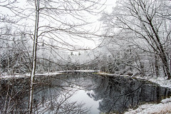 Dawson's Pond (cowgirljo78) Tags: pond ice calm serene wild wilderness winter spring april wisconsin bayfieldcounty trees woods forest snow white icestorm reflections
