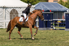 A9907943_s (AndiP66) Tags: springen hindelbank jegensdorf 2017 29april2017 pferd horse schweiz switzerland kantonbern cantonberne concours wettbewerb horsejumping equestrian sports springreiten pferdespringen pferdesport sport sony alpha sonyalpha 99markii 99ii 99m2 a99ii ilca99m2 slta99ii sony70400mm f456 sony70400mmf456gssmii sal70400g2 amount andreaspeters april