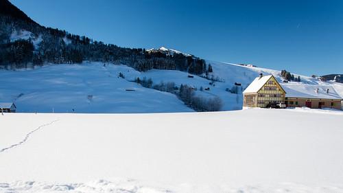 Landscape in Brülisau, Appenzell-Innerrhoden (Snowshoe-Tour Brülisau - Plattenbödeli - Ruhsitz - Brülisau)