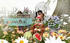 It's yummy for my tummy! (Sydney Maravilla) Tags: buglets thimble barberyumyum sodapopshop jian theepiphany tinygems secondlife sl toddleedoo outdoors people children kid watermelon spring flowers child photography