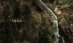 water slide, 1800's style... (Alvin Harp) Tags: flume logging 1800s nevada reno april 2017 sonyilce7rm2 fe70200mmf28 gmoss14x trees slide alvinharp