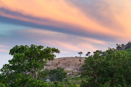 KrugerParkREIZ&HIGHRES-73