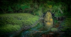 Holy Santuary (JDS Fine Art Photography) Tags: water green woods nature illumination light inspirational beauty naturalbeauty hdr