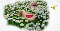 Beauty among daisies (claudiadea131) Tags: daisies lips bird eye imagination fantasy