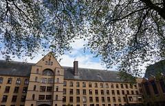 Borgerstein (Sint-Katelijne-Waver) Tags: borgerstein ijzerenveld park sintjozefseminarie plataan sintkatelijnewaver pasbrug seminarie seminary school verzorgingsinstelling wwwborgersteinbe