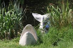 20170517-135213LC (Luc Coekaerts from Tessenderlo) Tags: bel belgium dassenaarde diestschaffen vlaanderen cc0 creativecommons 20170517135213lc coeluc a20170517kvlvasdonk kvlvdeurne wak asdonk landart public object art fish whale nobody