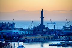 Genoa - La Lanterna (bautisterias) Tags: italy italia liguria riviera ligurie genova genoa gênes zêna d750 europe dusk sunset med mediterranean mediterraneanitaly