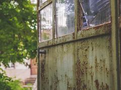 Open door (fincithreee) Tags: lost place garden tree green door rust glass pane abandoned forgotten panasonic g7