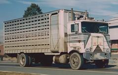 "Marmon, ""Ezra H Good #9"" (PAcarhauler) Tags: marmon coe truck semi bigrig"