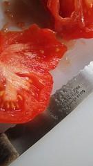 Heirloom tomato (wilson hughes) Tags: heirloomtomato