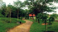 https://foursquare.com/v/denai-alam-lake-view/4e9877404690053a31c49250 #natural #garden #travel #holiday #green #outdoor #Asia #Malaysia #selangor #Shahalam #denaialam #大自然 #公园 #外景 #旅行 #度假 #绿色 #亚洲 #马来西亚 #雪兰莪 #沙啊南 #grabcar #uber