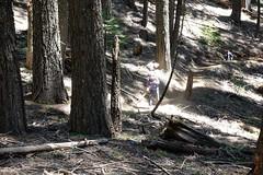 spring clean #2 (11 of 12) (singlespeeder) Tags: fta forestcity lanig mattp raking springclean