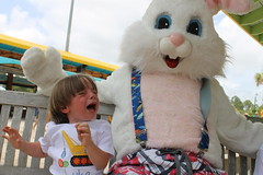 Easter Bunny 152