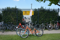 """Still Life with Bicycles and """"No Bike Parking' Sign (Omunene) Tags: neworleansjazzandheritagefestival2017 jazzfest bikes bicycles fence fencefriday nobikeparking fairgrounds"""