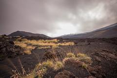 Etna 3 (gsamie) Tags: 600d canon etna guillaumesamie italy rebelt3i sicilia sicily gsamie lava trekking volcano