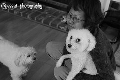 Coming home (jessat_photography) Tags: photography original camera nurture care everlasting home candid blackandwhite bond relationship love human dogs