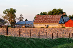 Warmth of Spring (dshoning) Tags: fencefriday 52weeksof2017 iowa spring evening sunset fence farm barn landscape