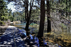High Water on the bike trail (dwight g) Tags: canon 6d 24105 river trees bikepath ps topaz
