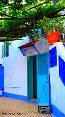 Houses of Chefchaouen (Nicolay Abril) Tags: شفشاو الشاون تطوان المغرب أفريقيا العربي chauen xauen chefchauen tangiertetouan tétouan tangertetouan tangertetuan tetuán tetuanprovince marruecos marocco morocco maroc marokko maghreb magreb africa afrika afrique chefchaouen chaouen xaouen